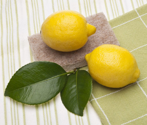 Eco Friendly, Zero Plastic All purpose Cleaner Lemon